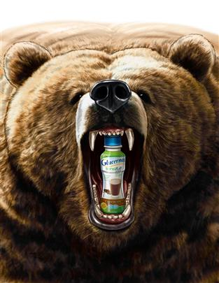 tight color storyboard of angry grizzly bear with drink